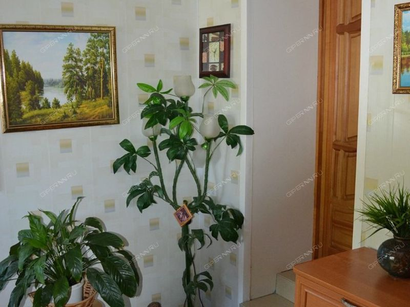 дом на Ново-Луговая д.14 рабочий посёлок Большое Мурашкино