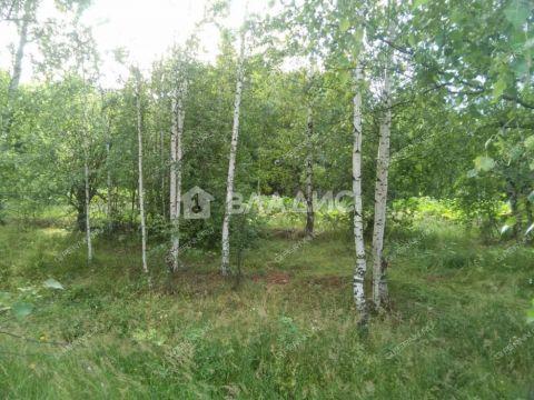 derevnya-kotelnicy-gorodskoy-okrug-chkalovsk фото