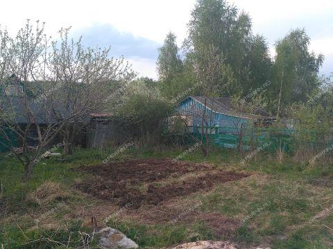 selo-kamenki-bogorodskiy-rayon фото