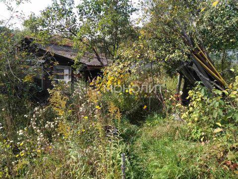 dacha-ul-yubileynaya фото